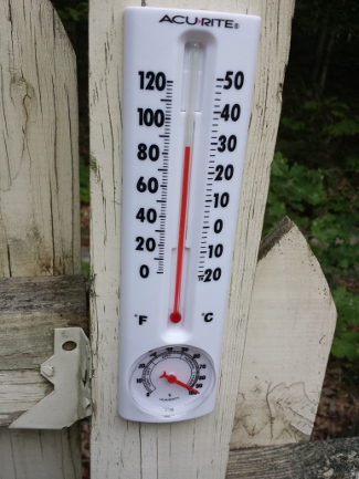 Thermometer and humidity gauge.