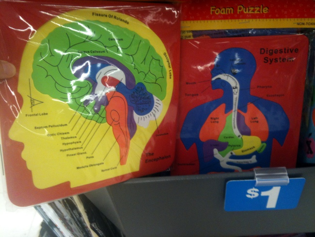 educational foam puzzles at Staples