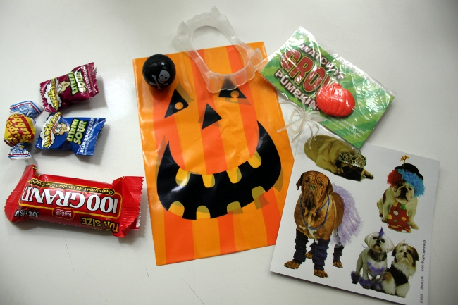 The exploded contents of our Halloween treat sacks this year.