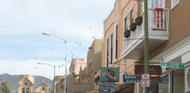 A flock of birds circling the rooftops in downtown Santa Fe.