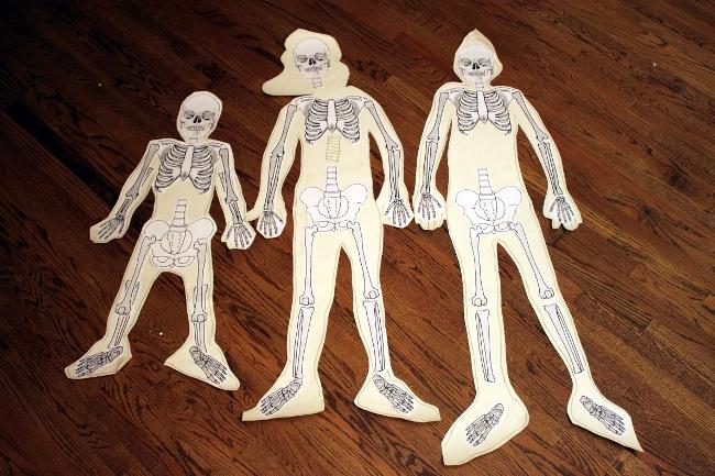 My skeletonized children.