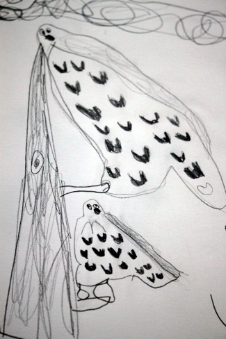 Drawing of Audobon owls