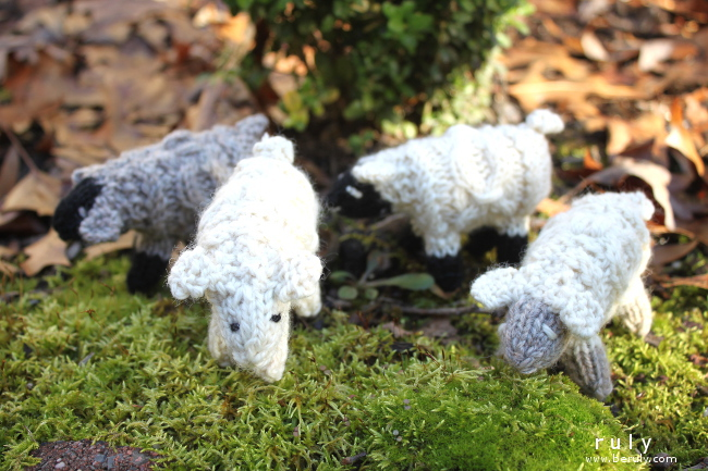 A flock of knitted sheep ornaments.