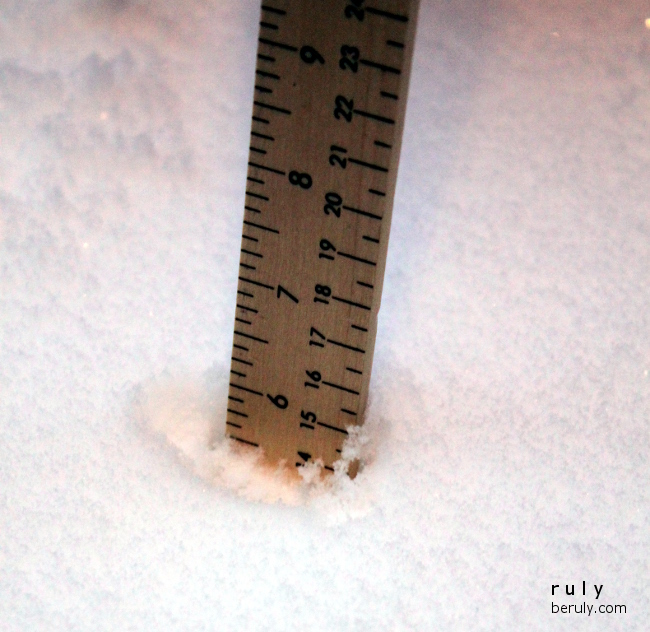 Yesterday's snowfall?  6 inches.