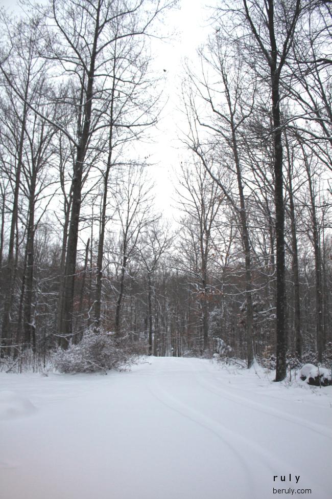 2015-03-06-snowscene2