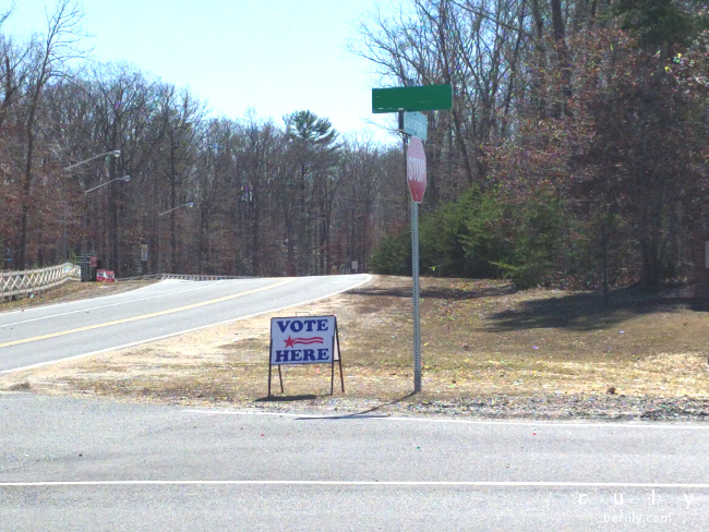 "This lone ""Vote Here"" sign is all there was to be seen of campaign activity on Tuesday.  It kind of fits Virginia's reputation for understatement."
