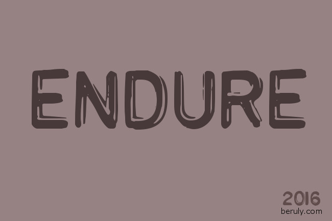 Theme Word for 2016: Endure